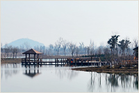 eco_town_img_01