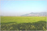 land_img_01